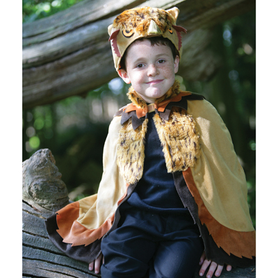 Boys Children's Ollie the Owl Fancy Dress Halloween Costume