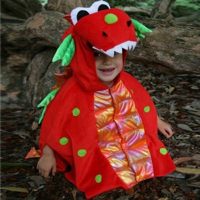 Boys Children's / Toddlers Blaze Dragon Fancy Dress Up Costume