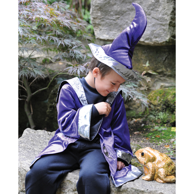 Boys and Girls Wizard With Hat Fancy Dress Costume