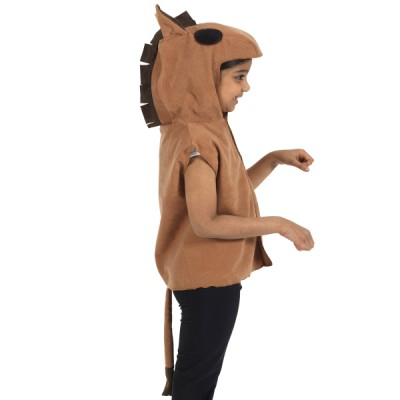 Children's Boys and Girls Horse Tabard Costume
