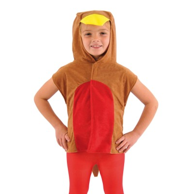 Children's Boys and Girls Red Robin Tabard Costume