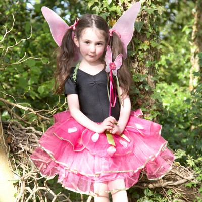 Girls Sugar Plum Fairy Set Fancy Dress Costume