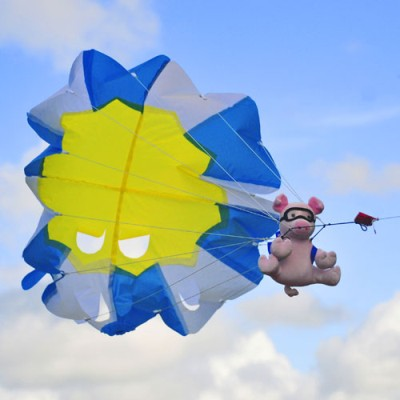 Air Piggles Fun Kite - Brookite
