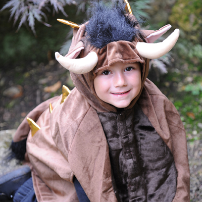 Boys Children's Monster/Gruffalo Fancy Dress Halloween Costume