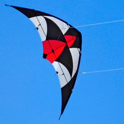 Harrier Sport Kite - Brookite