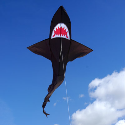 Shark Fun Kite Brookite